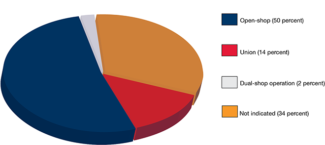 Type of business pie chart